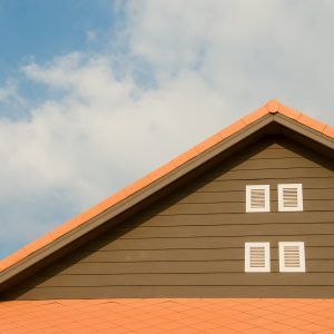 Roof Paints
